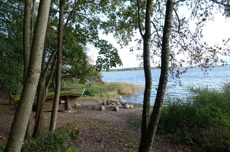 Boserup skov shelter