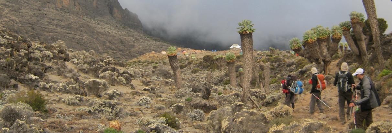 terrænet på Kilimanjaro
