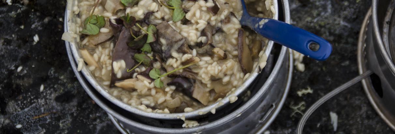 risotto med svampe og fjeldsyrer