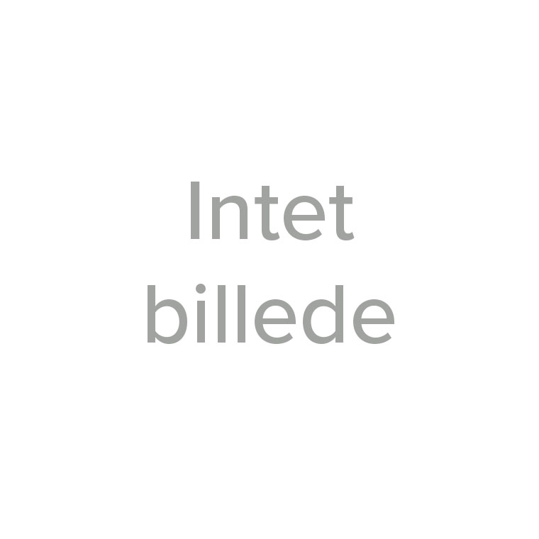 Adidas Terrex Agravic Speed sko, dame