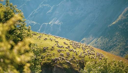 Rundt om Mont Blanc