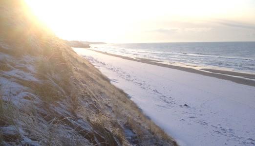 Vintervandring i Danmark