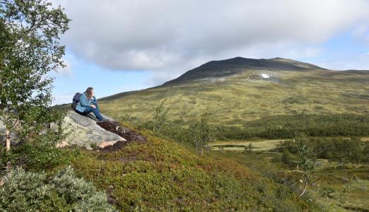 Vandretur i Sverige: En guide til Jämtlandstriangeln